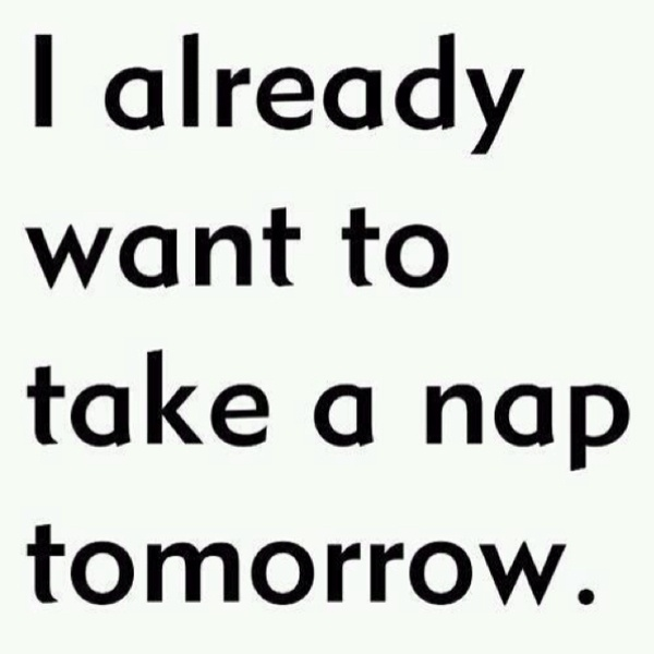 The feeling is mutual..Nap Time, Laugh, Life, Quotes, Funny, So True, Things, Naps Tomorrow, True Stories