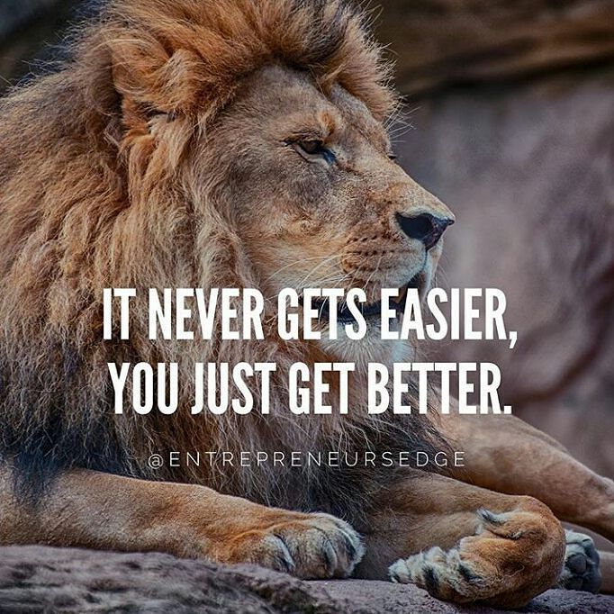 Motivational Quotes With Lion Images: 106 Best Lion Quotes Images On Pinterest