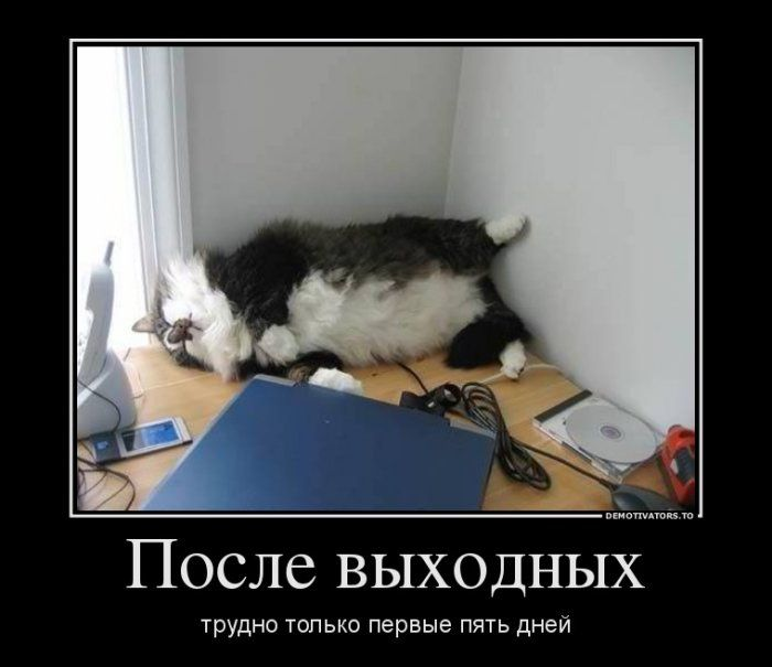 сердца картинки о трудной работе смешные ближайшем будущем лежит