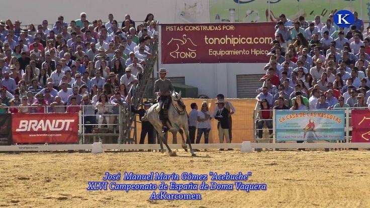 """Jose M. Marin Gomez """"Acebuche""""  11º Final XLVI Campeonato de España de Doma Vaquera Carmona 2017"""