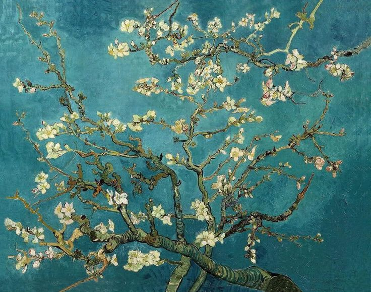 Vincent van Gogh – Blossoming Almond Tree