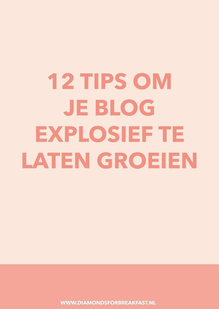 Hoe meer bezoekers je hebt, hoe interessanter je bent voor bedrijven en hoe meer mogelijkheden je hebt om jezelf en je blog in de markt te zetten. Gebruik daarom deze 12 tips om meer bezoekers naar je blog te trekken.