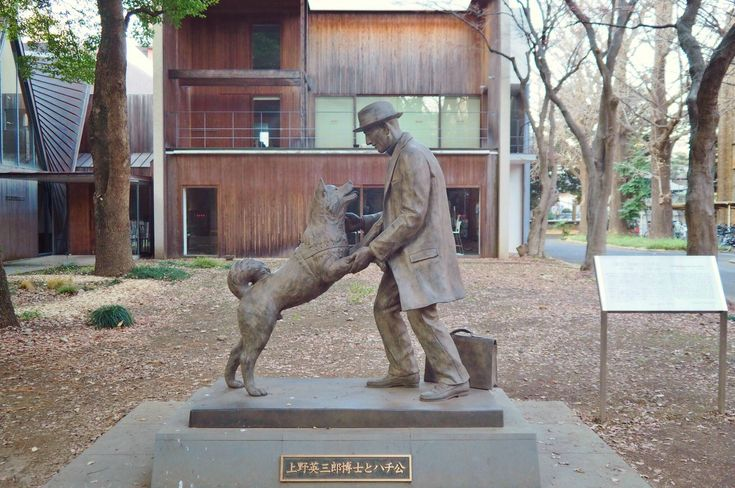 hachiko statue in japan