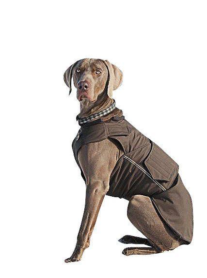 Weimaraner SoftShell Dog Coat - Red Winter Dog Coat - Custom Dog Raincoat - SoftShell / Fleece coat + turtleneck / snood - MADE TO MEASURE
