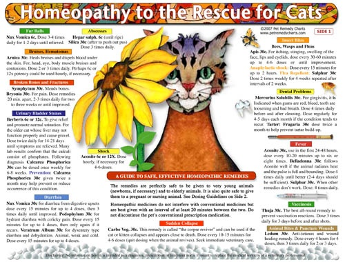 a history of the use of alternative health care or homeopathic care to treat illnesses Homeopathic and herbal health care products are  group to use complementary/alternative medicine  or continuously diagnose or treat illnesses,.