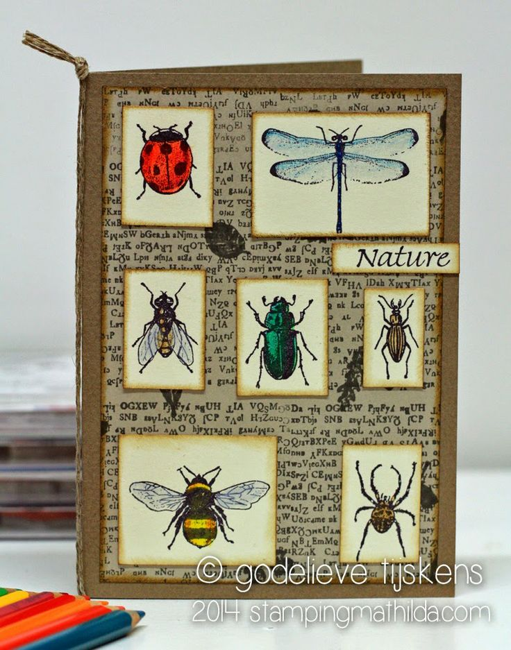StampingMathilda: Art Journey - Nature insects
