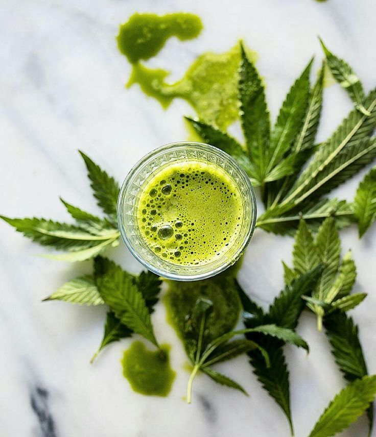 We love what @lobese is doing with her cannabis leaves - juicing them up to make vitamin and antioxidant packed drinks! Awesome way to start your weekend!