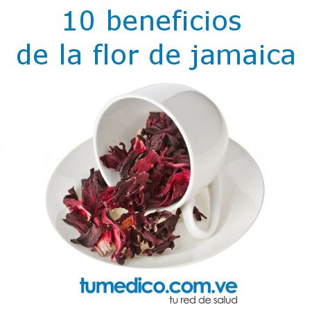 Si te gusta la flor de jamaica para beberla en infusión o como bebida refrescante, ahora te gustará más al saber estos 10 beneficios