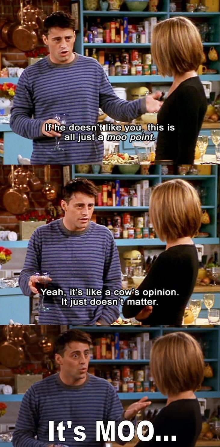 "Joey from Friends, ""Moo Point"". 