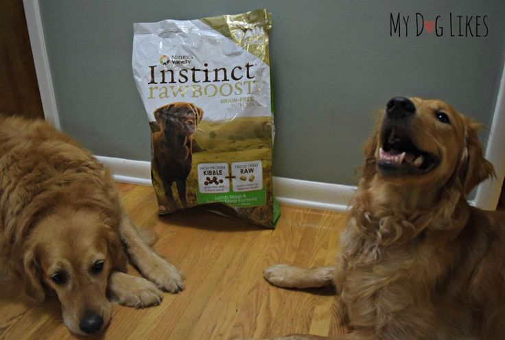 Nature's Variety Instinct Food, Review, Raw Feeding, Instinct Dog Food