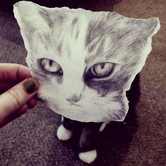 paper kitten 2 Nell Beaumont