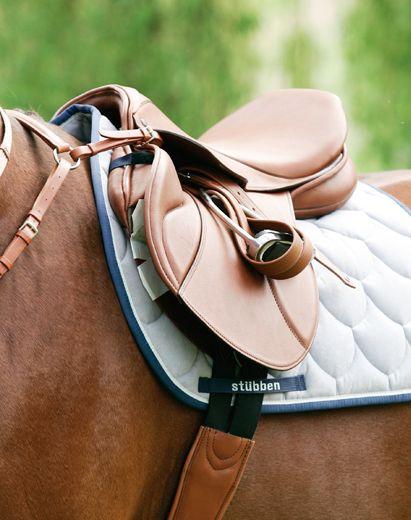 saddleporn:  Stubben Eidelweiss