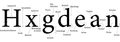 Die Anatomie der Buchstaben, Abbildung: cc Michael Preidel