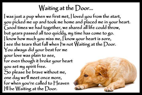 Dorado regalo de Memorial nevera imán Pet pérdida duelo de perro Labrador…