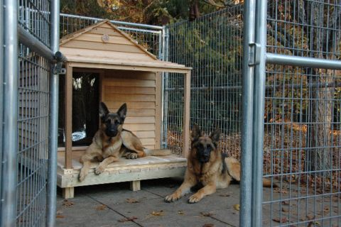 emejing dog house plans for large dogs pictures - fresh today