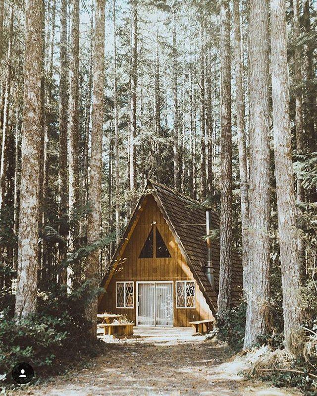 459 besten cabin + camp Bilder auf Pinterest   Baumhäuser, Haus ...