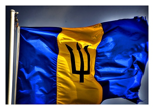 .Barbados National Flag