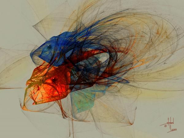 Cosmic Fish by Stephen Lucas