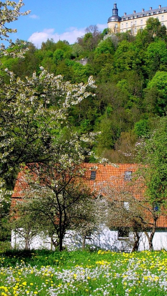 Bad-Wildungen-Germany in spring - so beautiful!
