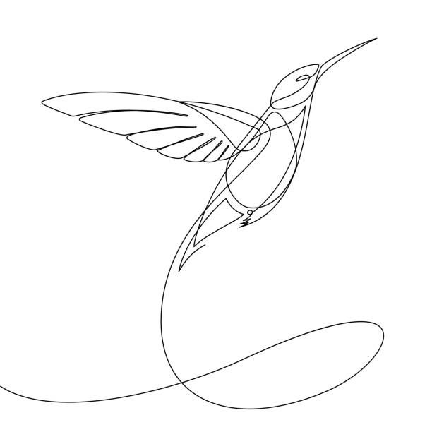 Best Continuous Line Drawing Bird Illustrations Royalty Free Vector Graphics Clip Art Istock In 2020 Line Art Tattoos Bird Line Drawing Abstract Line Art