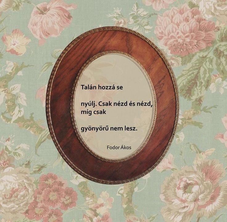 Fodor Ákos haikuja a szépségről. A kép forrása: Antikva - Online Antikvárium