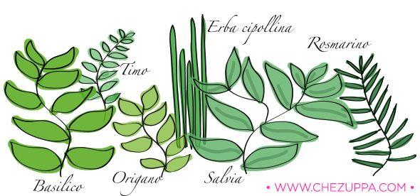 Le erbe aromatiche del mio #orto da #balcone http://www.chezuppa.com/lorto-aromatico-da-balcone-il-mio-balcone/  #giardino #herbs #aromatiche #piante #rosmarino #salvia #origano #timo #erbacipollina #art #artwork #graphic #illustrator #foodblog
