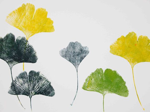 This is an original, hand pulled print. It was made very simply, by rolling ink onto ginkgo leaves and pressing them onto printmaking paper.