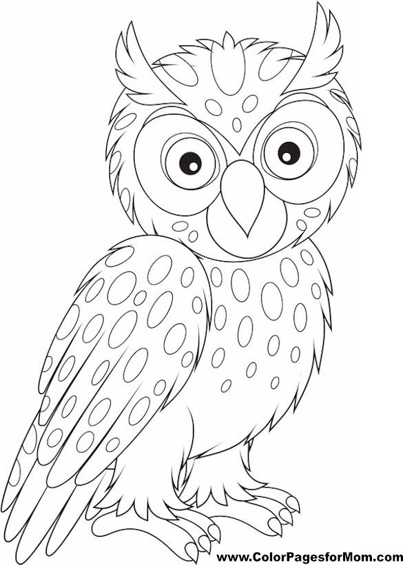 Advanced Coloring Pages Owls : Best owl coloring pages ideas only on pinterest