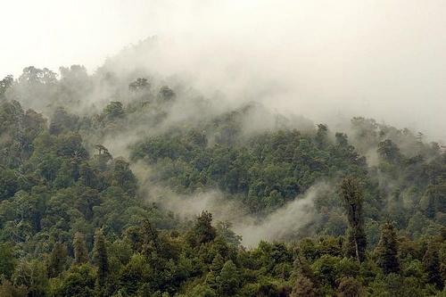 Humedad cordillerana    Termas de Chihuio.  Localizadas en la zona cordillerana proxima al Lago Futrono, al interior de Puerto Llifen. Region de Los Rios.