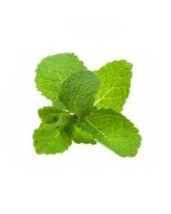 Buy online peppermint leaves #Pudina at best price from #GurgaonToday. We help you deliver any item of fruits and vegetable within 3 hours from the time of order placement.