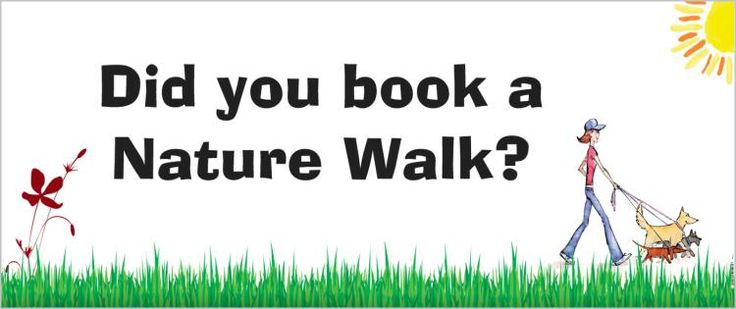 Nature walks from $8 for one dog to $15 for 3!  enquire today.....