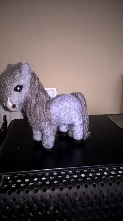 As it's gone back to being grey and rainy - I'm calling my Shetland pony Drizzle!