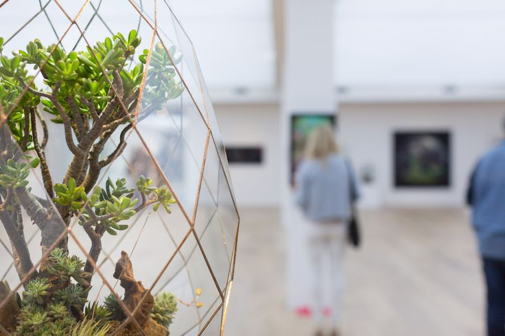 Exhibition Opening | Lady Garden   10. 09. 2017   Angles & Earth Terrariums installation at #CavalliEstate