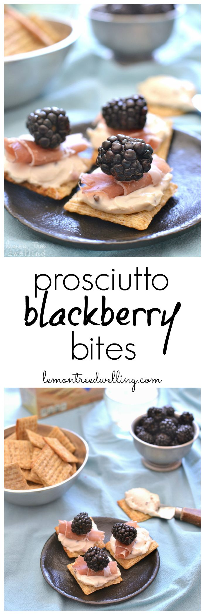 Prosciutto Blackberry Bites | Lemon Tree Dwelling