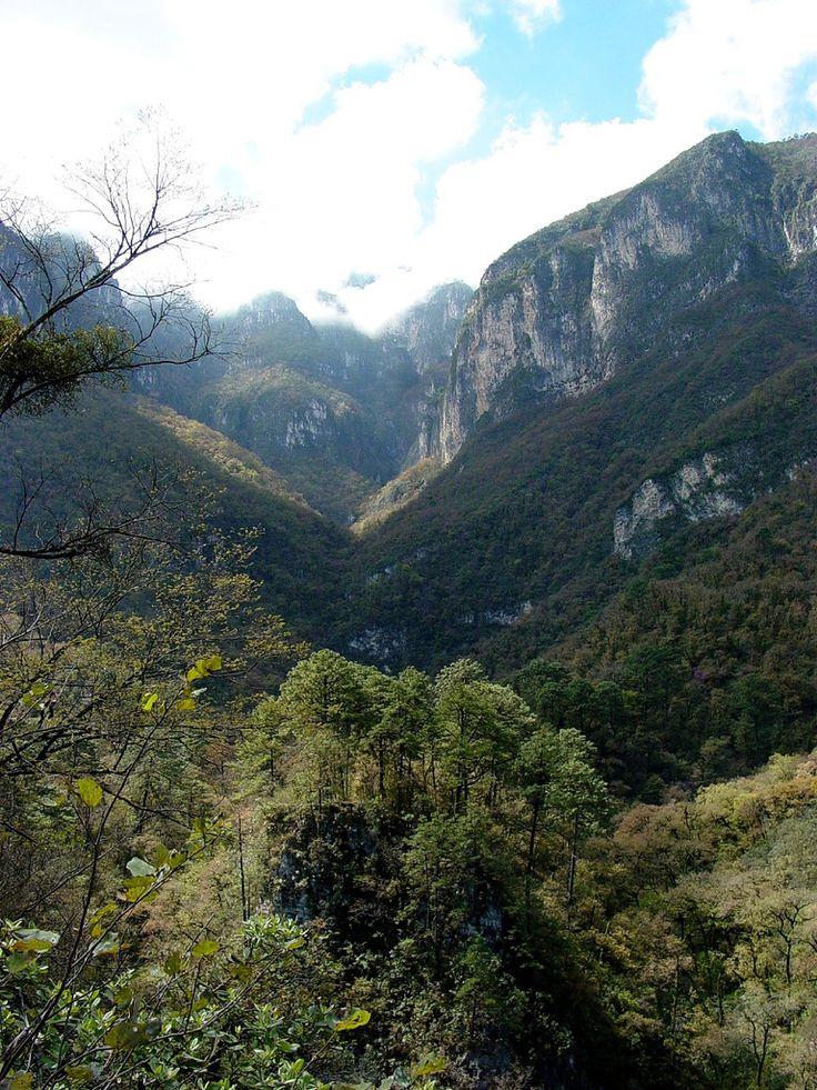 Cumbres de Monterrey.