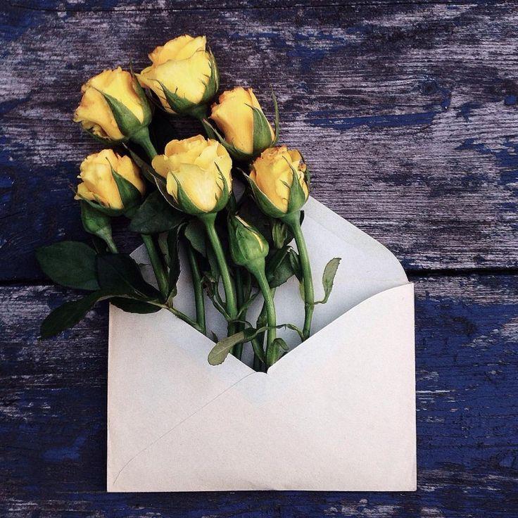 Цветы в конвертах – необыкновенный проект Анны Ремарчук: Анна покупает цветы или получает их в подарок, затем находит сочетание оттенков бумаги, из которой сделаны конверты, и природной красоты