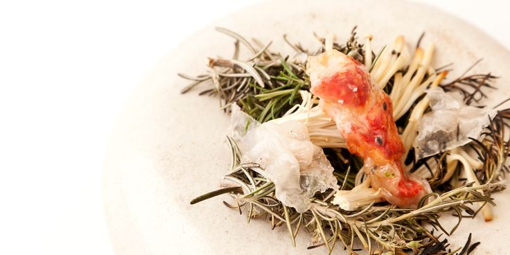 Delicious langoustines are paired with smoked enoki mushrooms in this canapé recipe by Nuno Mendes. Rosemary lends lovely flavour in this langoustine recipe.