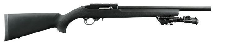 Ruger® 10/22® Tactical, it's memorial weekend so I always buy a gun to celebrate all those who have served, fought and die for my rights and freedom around the world. Thank you for all your sacrifices and service.