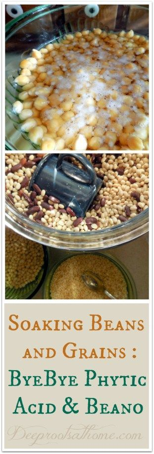 Soaking Beans and Grains ~ ByeBye Phytic Acid and Beano