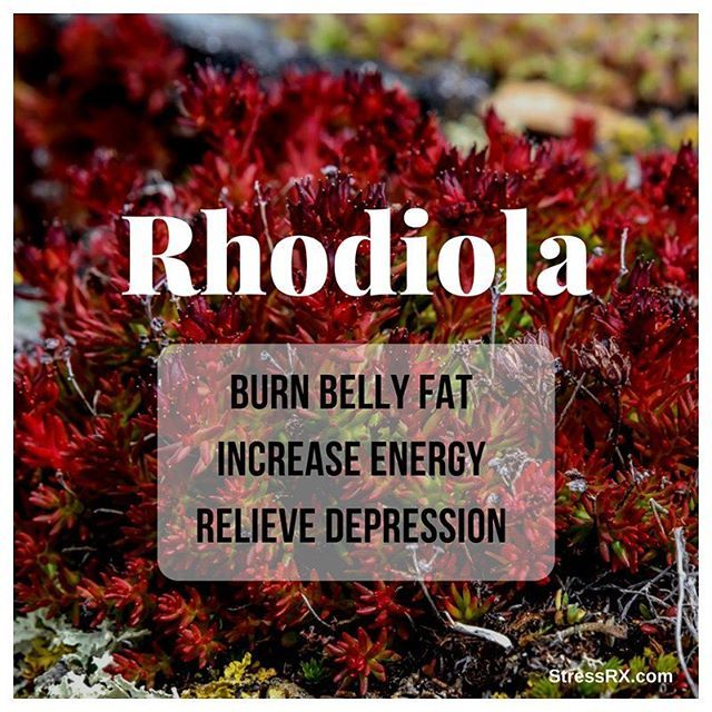 This adaptogenic herb has some amazing benefits! Rhodiola Rosea is also known as golden root or arctic root. Indigenous to the mountains of Siberia and Northern Europe, it has been used for centuries to help people withstand the stress of cold temperatures and high altitudes.