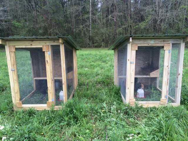 25 best ideas about duck pens on pinterest duck coop for Fancy chicken coops for sale