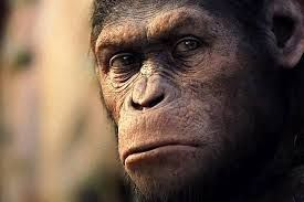 cesar el planeta delos simios actor - Buscar con Google