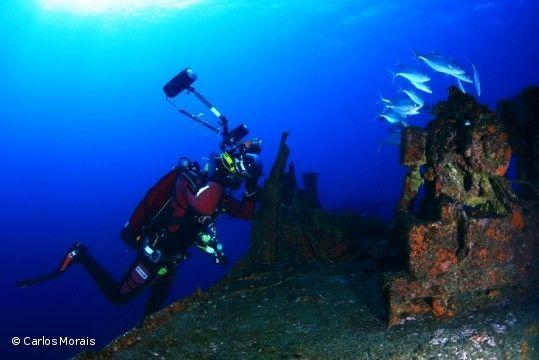 Graciosa recebe 1º Campeonato Europeu de Fotografia Subaquática.