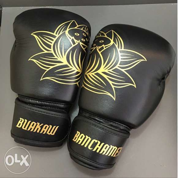View Buakaw Banchamek Premium Leather Muay Thai Boxing Gloves Velcro for sale in Quezon City on OLX Philippines. Or find more Brand New Buakaw Banchamek Premium Leather Muay Thai Boxing Gloves Velcro at affordable prices.