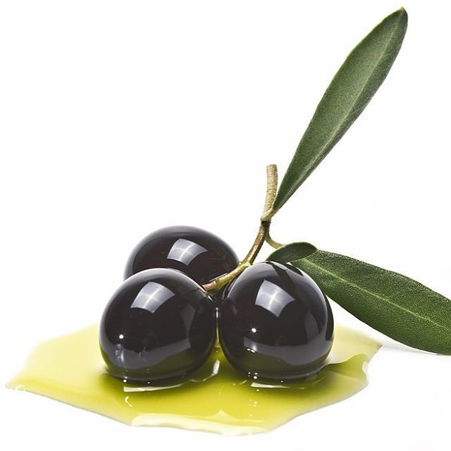 Did you know that Olives improve your memory?. Olives contain polyphenols, natural chemicals that reduce oxidative stress in the brain. Eating a daily serving of olives improves memory by 25%.   #serratramuntana #Mallorca #apadrina #tree #olivetree #mediterranean #memory #healthy #oil #island #cooking #food #salad #feelings #travel #mountains #trekking #chef #premium #exclusive