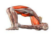 10 поз йоги, чтобы помочь потерять жир на животе Простые позы йоги, которые помогут справиться с брюшным жиром. Даже если ...
