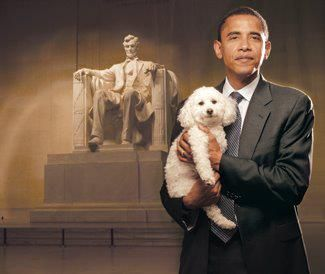 """The above photo shows President Barack Obama with """"Baby,"""" a three-legged dog that lost its fourth limb following years of mistreatment at a California puppy mill.  President Obama posed for this picture for Jana Kohl's book A Rare Breed of Love. As a senator, he co-sponsored Dick Durbin's bill to crack down on abusive puppy mills, and earned the first ever presidential endorsement from the Humane Society."""