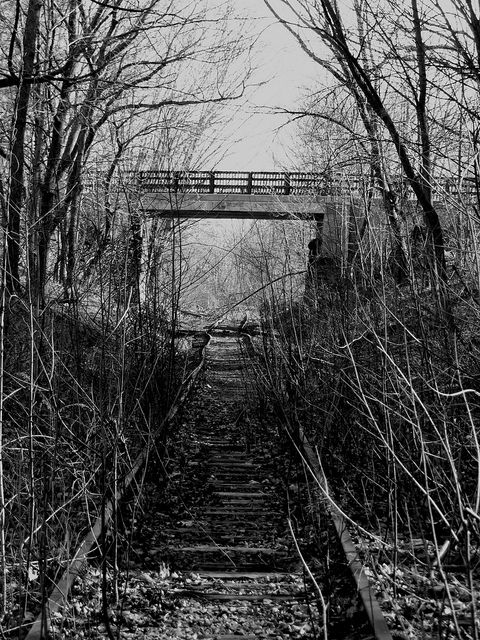 Abandoned rail track at Fresh Pond. DiscoverFreshPond.com