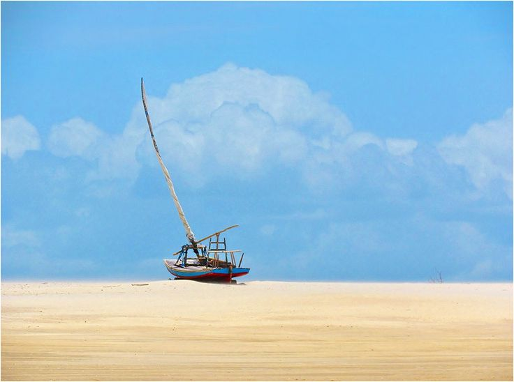 Best Photos of the Day in #Emphoka by Antonio Marin [Canon PowerShot SX30 IS] - http://flic.kr/p/cwhWGU