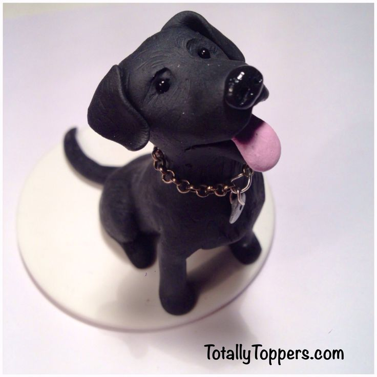 Cake Dog Topper Bordie Collie